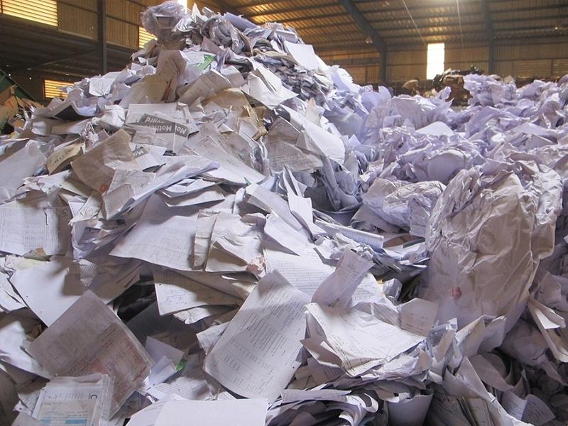 Thu mua giấy vụn ở công ty