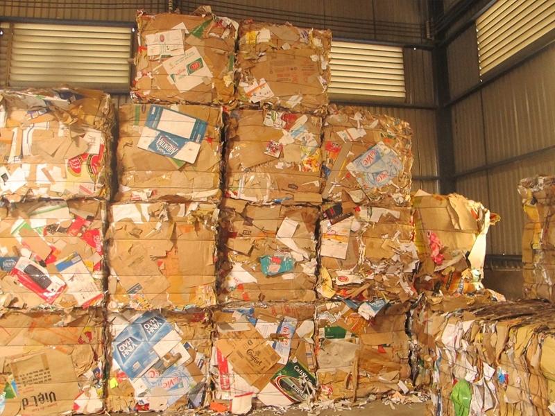 Thu mua giấy carton phế liệu